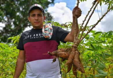 Pequeños productores de Bolívar, Sucre y Córdoba saltaron al comercio virtual